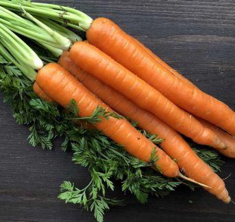 Морковь . телефон +79183782631 купить на сайте объявления Армавир онлайн